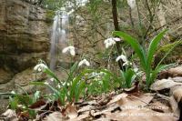 Поход к водопаду Суаткан возле с.Богатое ущелье