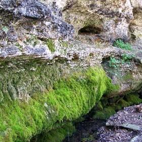 Отдых в Крыму. Плачущая скала ландшафтный заказник