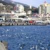 Отдых в Крыму. Большая Ялта: Ялта, Массандра, Никита